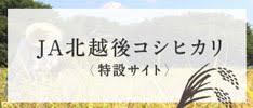 JA北越後コシヒカリ