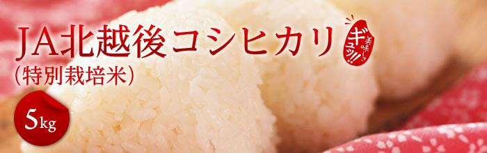 JA北越後コシヒカリ(特別栽培米5kg)